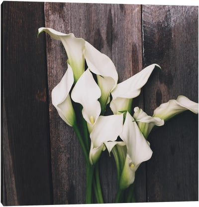 Calla Lilies Canvas Art Print