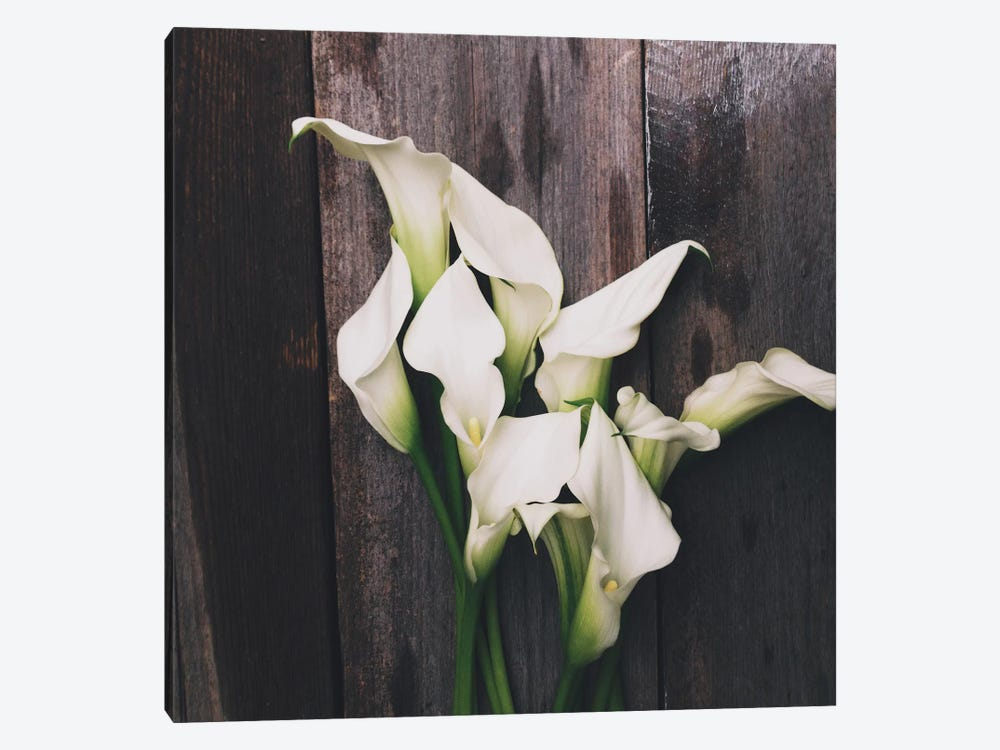 Calla Lilies by Olivia Joy StClaire 1-piece Canvas Art