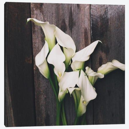 Calla Lilies Canvas Print #OJS11} by Olivia Joy StClaire Canvas Artwork