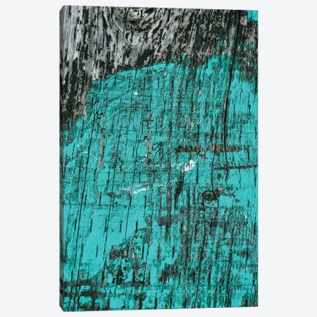 Far Away II Canvas Print #OJS128} by Olivia Joy StClaire Art Print