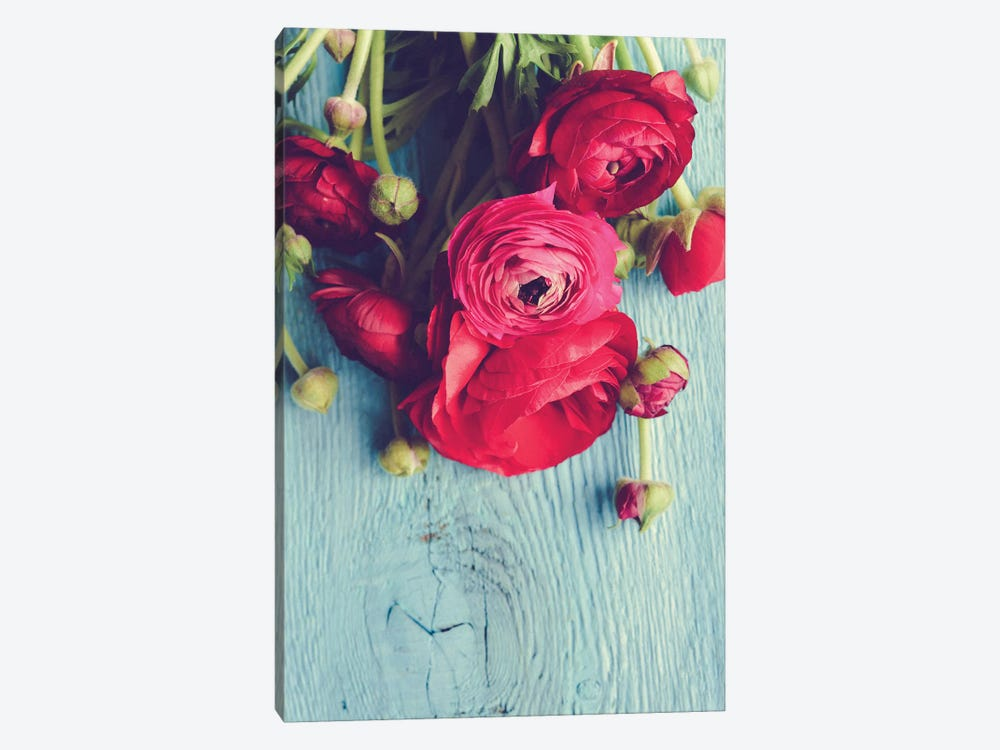Flower by Olivia Joy StClaire 1-piece Canvas Artwork
