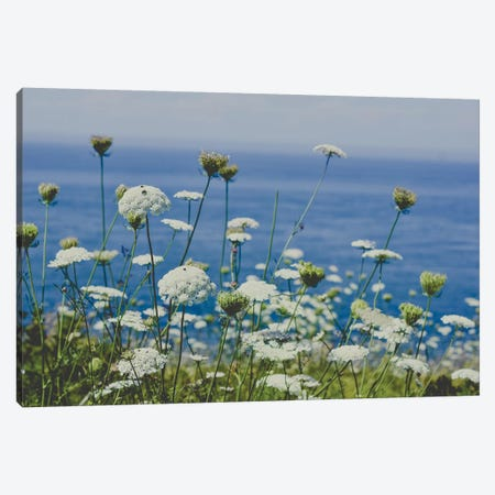 Flowers By The Sea Canvas Print #OJS131} by Olivia Joy StClaire Canvas Artwork