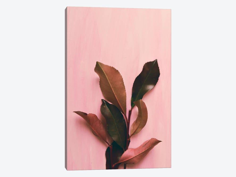 Foliage I by Olivia Joy StClaire 1-piece Canvas Print