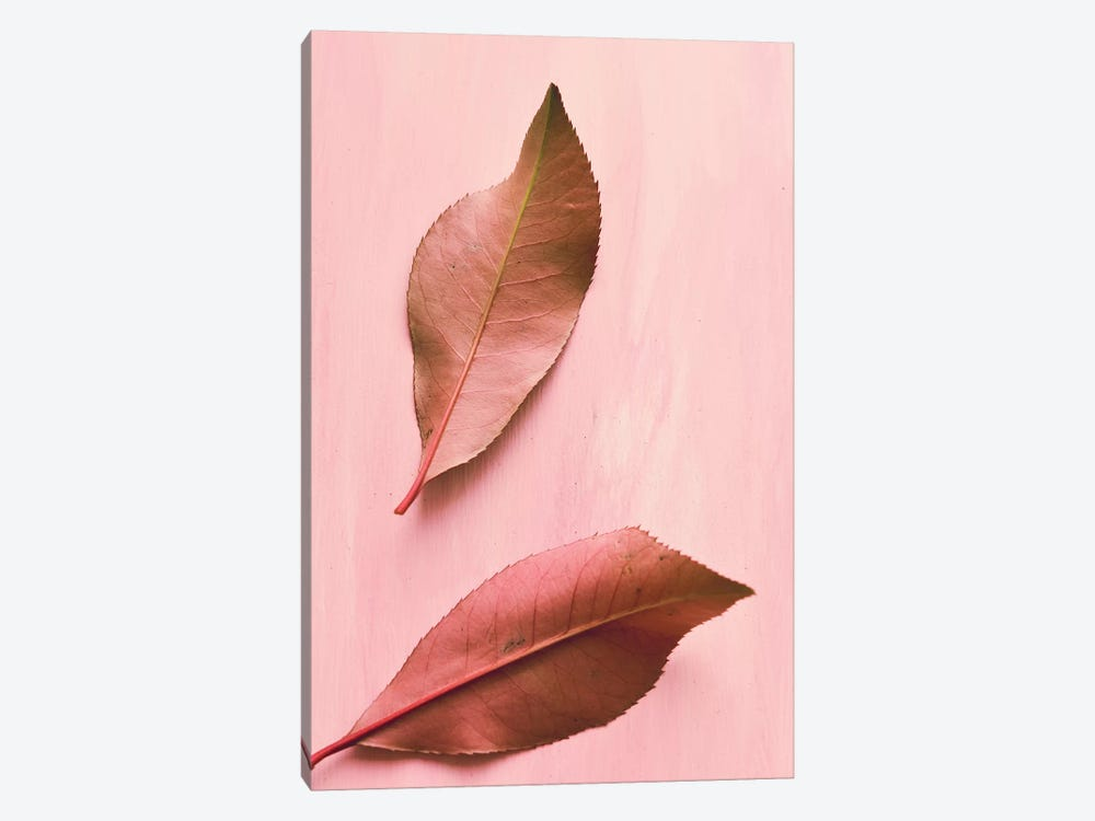 Foliage III by Olivia Joy StClaire 1-piece Canvas Art Print