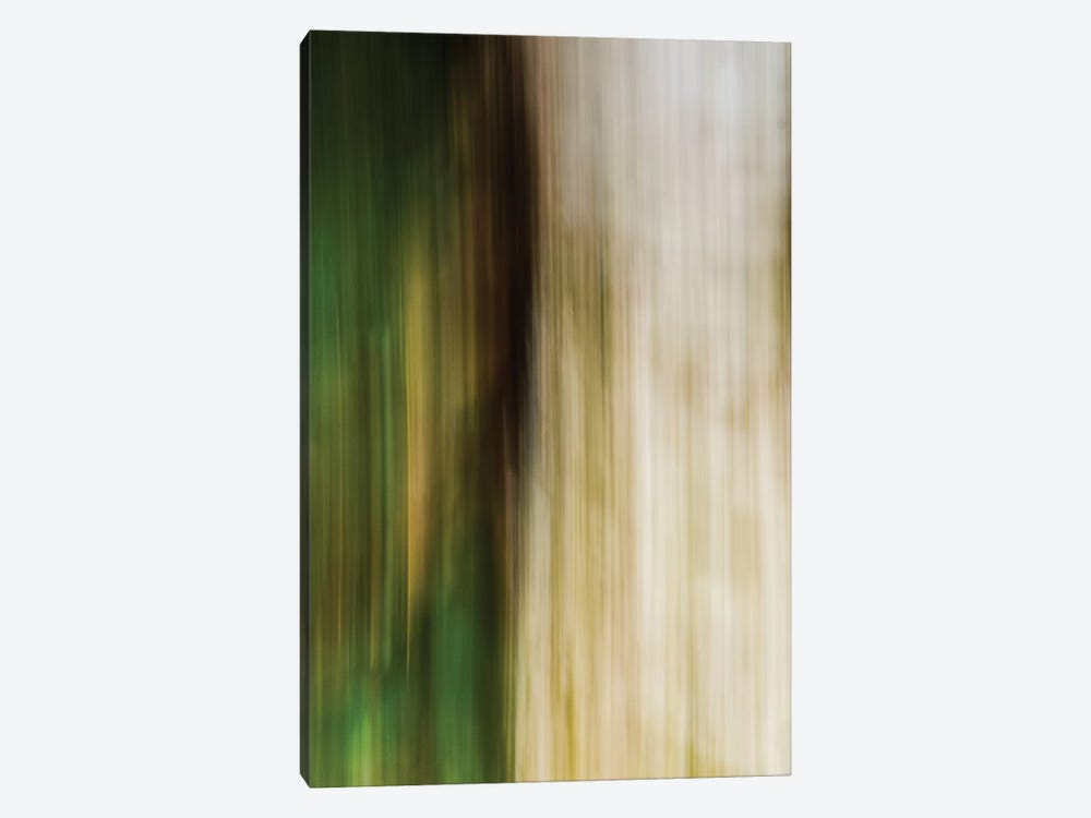 Leaves And Stone by Olivia Joy StClaire 1-piece Canvas Artwork