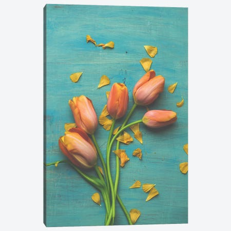 Orange Tulip Still Life II Canvas Print #OJS153} by Olivia Joy StClaire Canvas Art