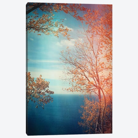 Overlook Canvas Print #OJS154} by Olivia Joy StClaire Art Print