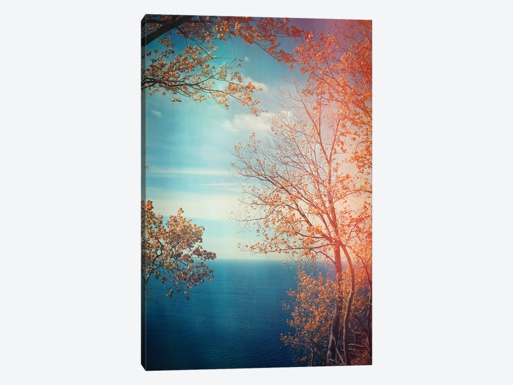 Overlook by Olivia Joy StClaire 1-piece Canvas Artwork