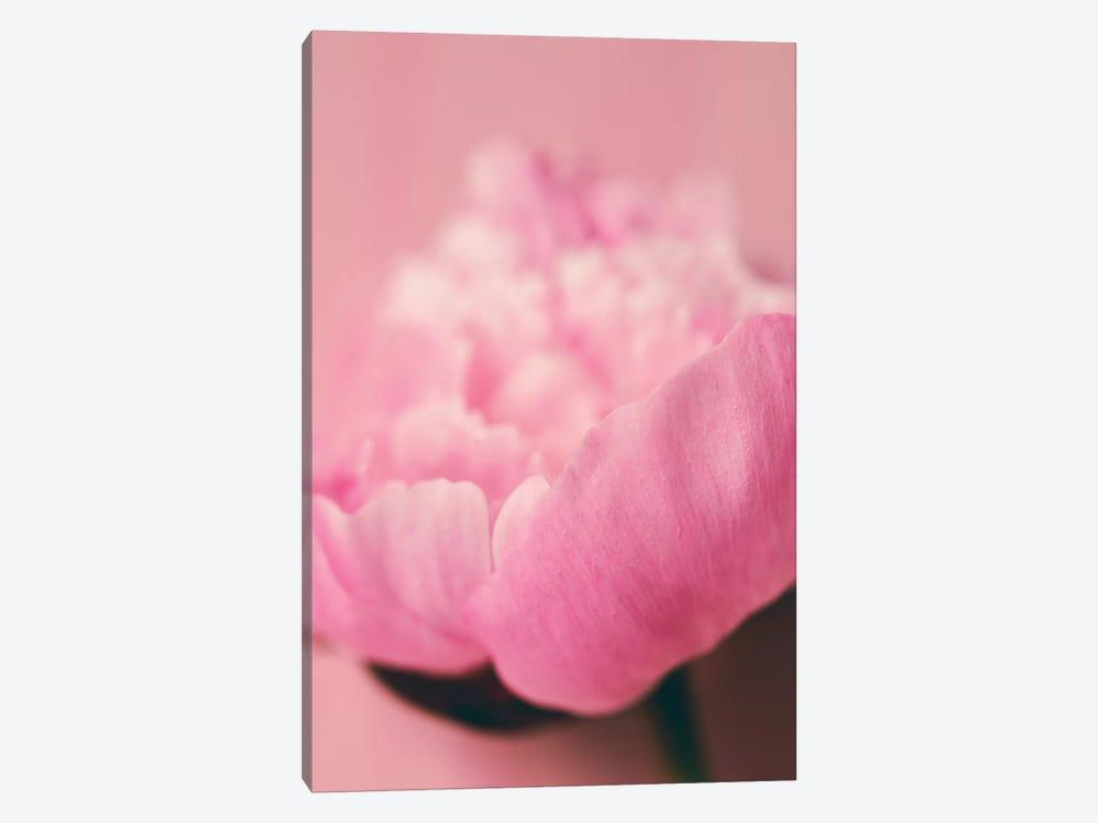 Pink Peony I by Olivia Joy StClaire 1-piece Art Print