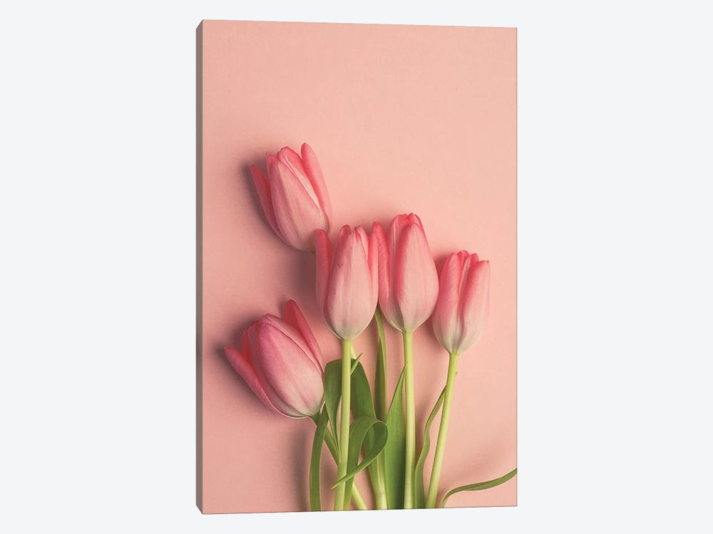 Pink Tulips On Pink by Olivia Joy StClaire 1-piece Canvas Artwork