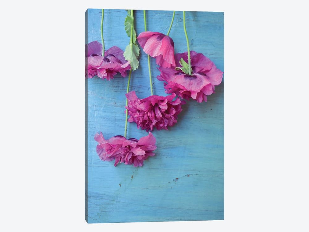 Poppies 1-piece Art Print