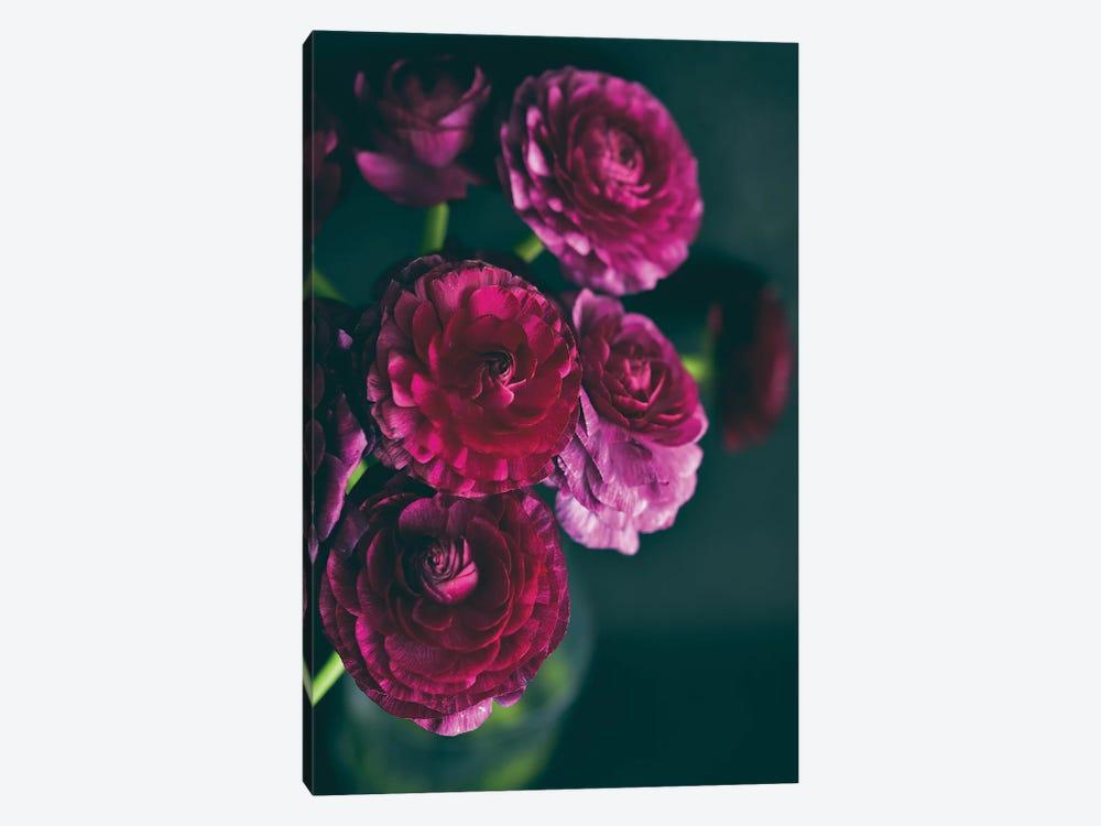 Purple Ranunculus II by Olivia Joy StClaire 1-piece Canvas Print