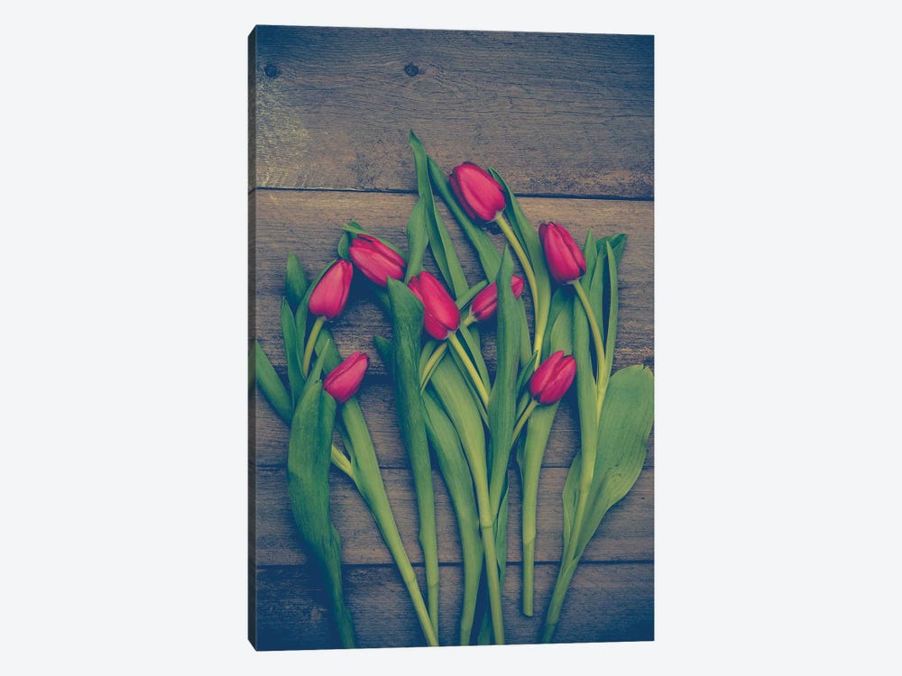 Red Tulips by Olivia Joy StClaire 1-piece Canvas Wall Art