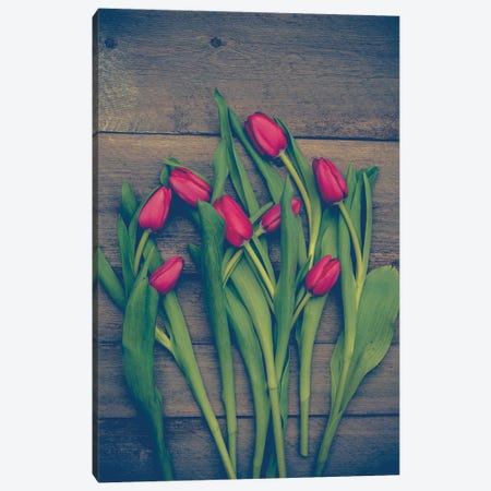 Red Tulips 3-Piece Canvas #OJS169} by Olivia Joy StClaire Canvas Print