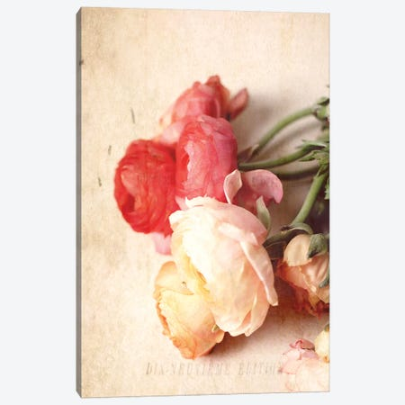 Romance Canvas Print #OJS170} by Olivia Joy StClaire Canvas Art