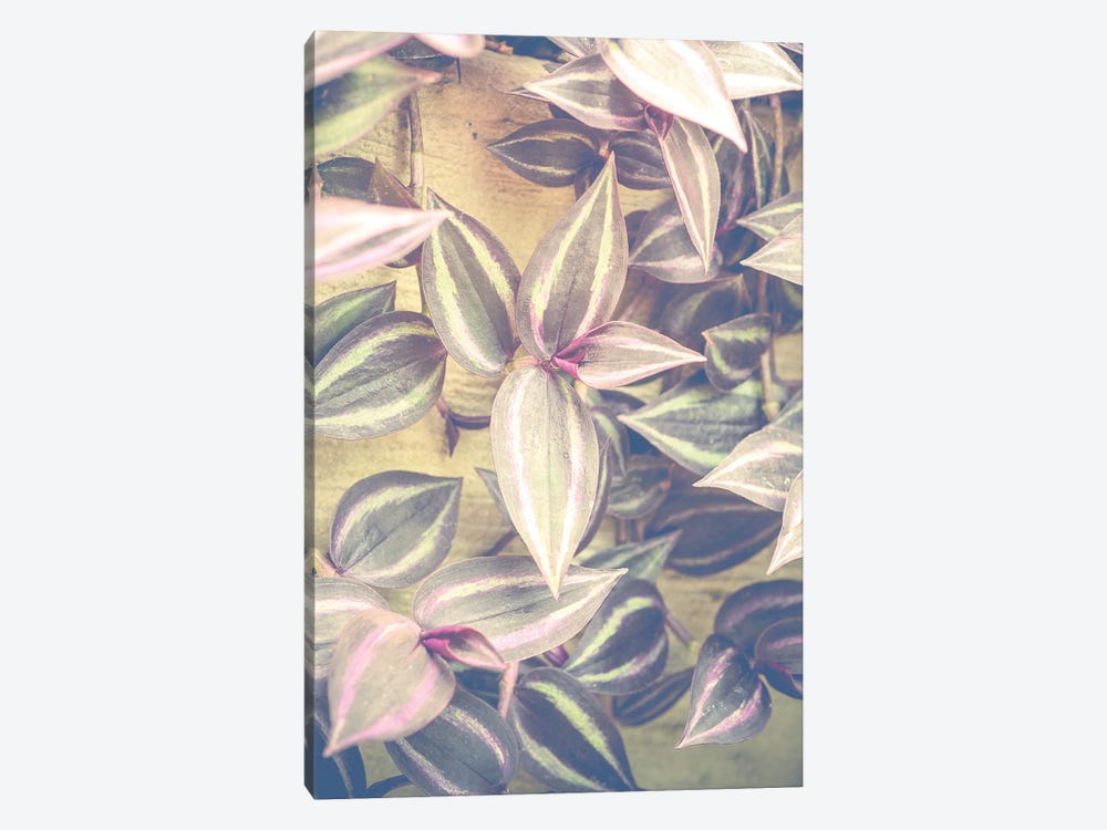 Trailing Leaves by Olivia Joy StClaire 1-piece Canvas Art Print