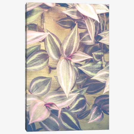 Trailing Leaves 3-Piece Canvas #OJS188} by Olivia Joy StClaire Canvas Print