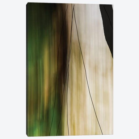Trees And Rock 3-Piece Canvas #OJS189} by Olivia Joy StClaire Canvas Print