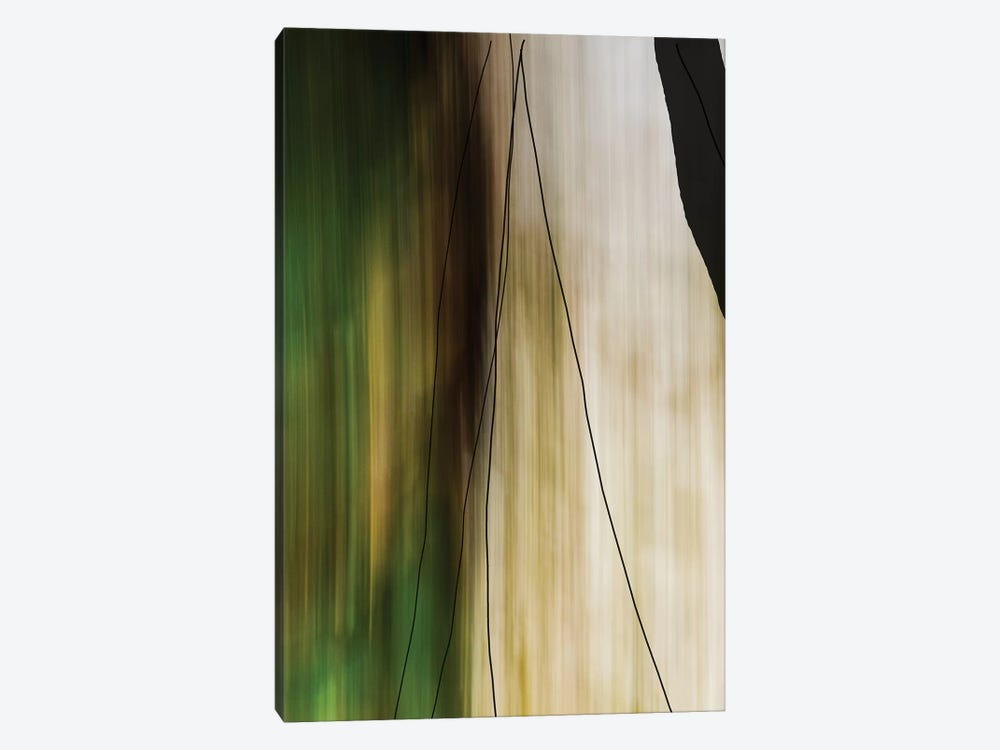 Trees And Rock by Olivia Joy StClaire 1-piece Canvas Art