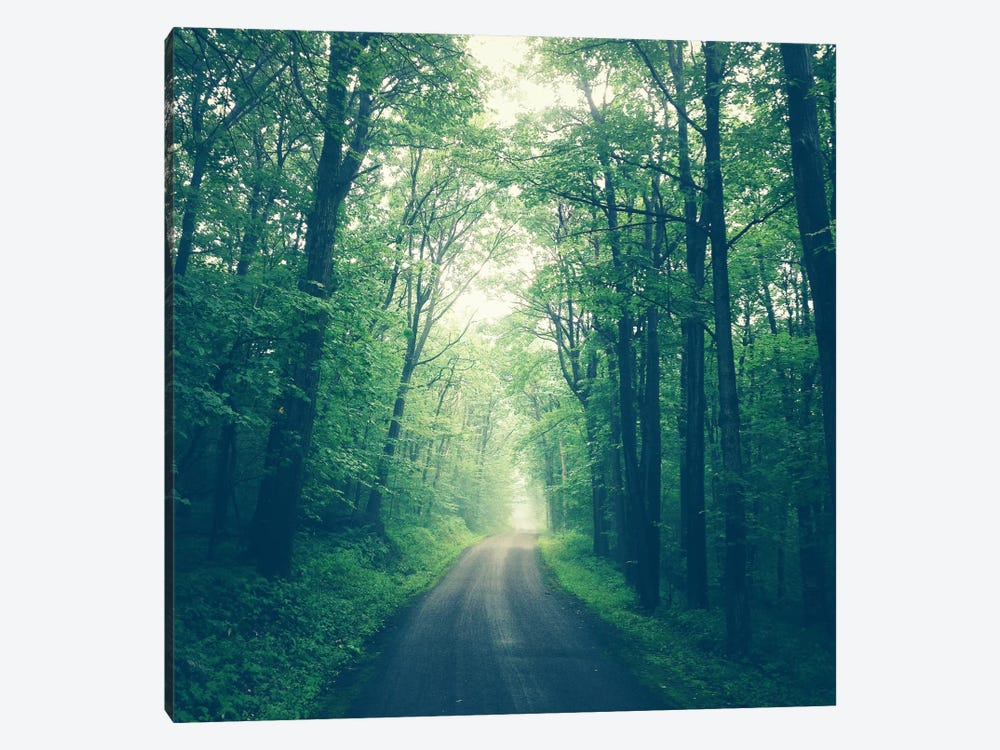 Forest Road by Olivia Joy StClaire 1-piece Canvas Art Print