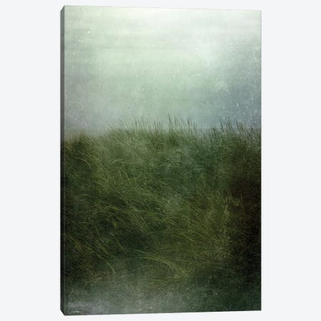 Twilight Beach Canvas Print #OJS191} by Olivia Joy StClaire Canvas Art