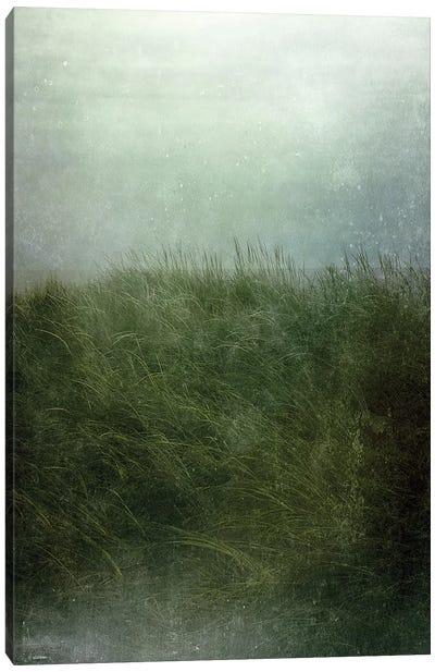 Twilight Beach Canvas Art Print