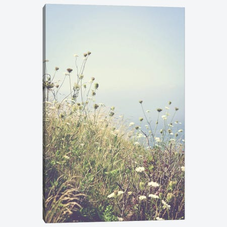 Wildflowers By The Sea Canvas Print #OJS202} by Olivia Joy StClaire Canvas Art