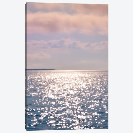 Wind Song 3-Piece Canvas #OJS203} by Olivia Joy StClaire Canvas Wall Art