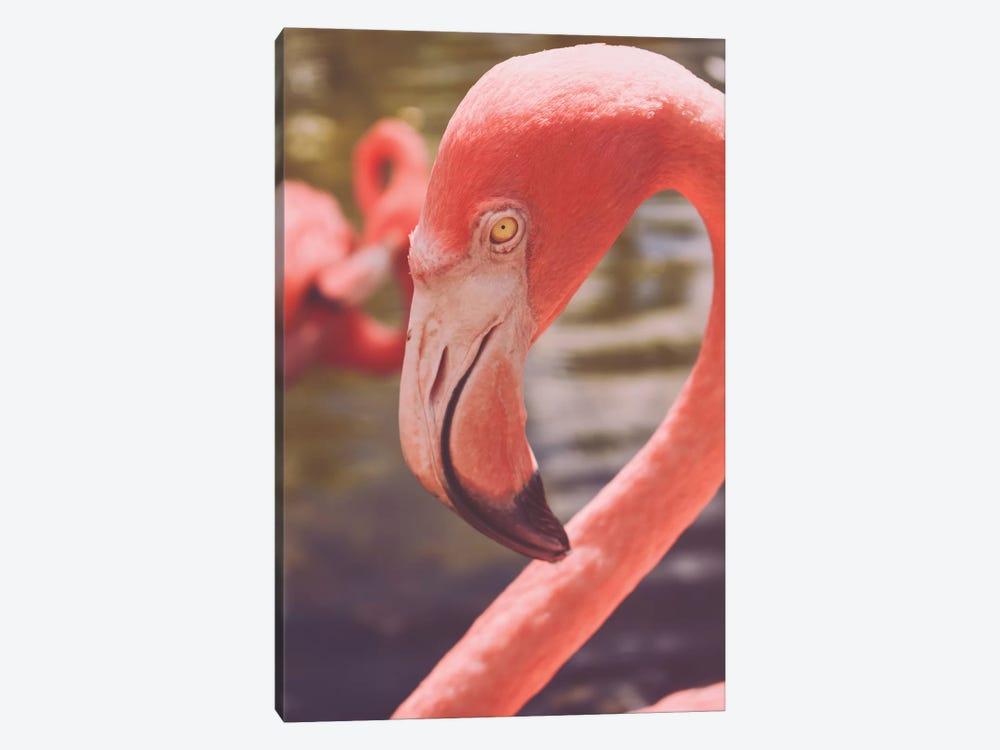 Flamingo Love by Olivia Joy StClaire 1-piece Canvas Artwork
