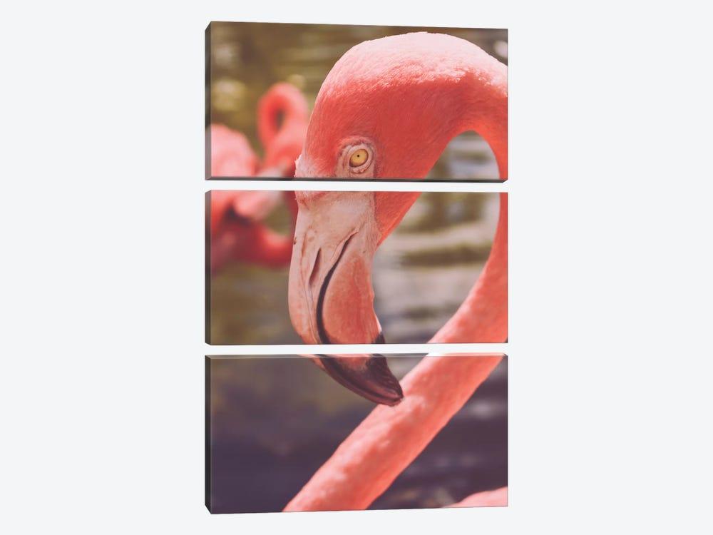 Flamingo Love by Olivia Joy StClaire 3-piece Canvas Artwork