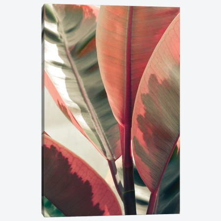 Beautiful Leaves 3-Piece Canvas #OJS220} by Olivia Joy StClaire Canvas Wall Art