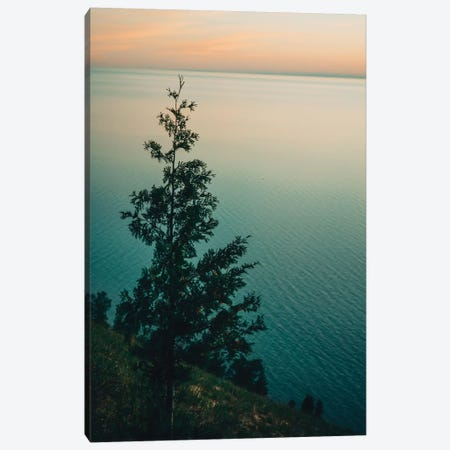 Solitary Canvas Print #OJS223} by Olivia Joy StClaire Canvas Art