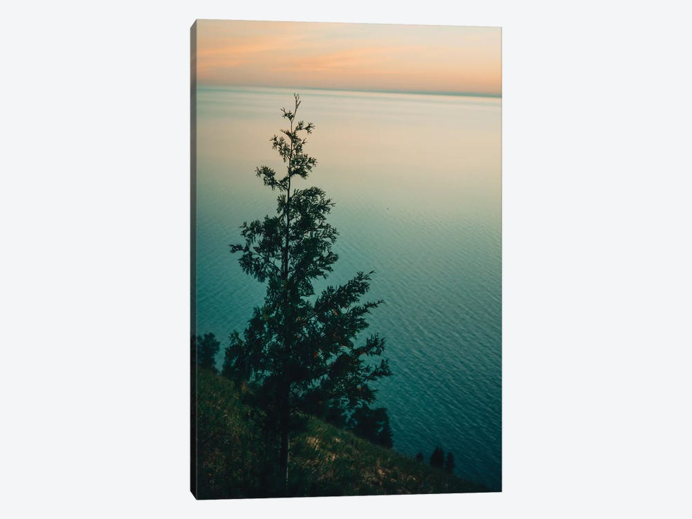 Solitary by Olivia Joy StClaire 1-piece Canvas Wall Art