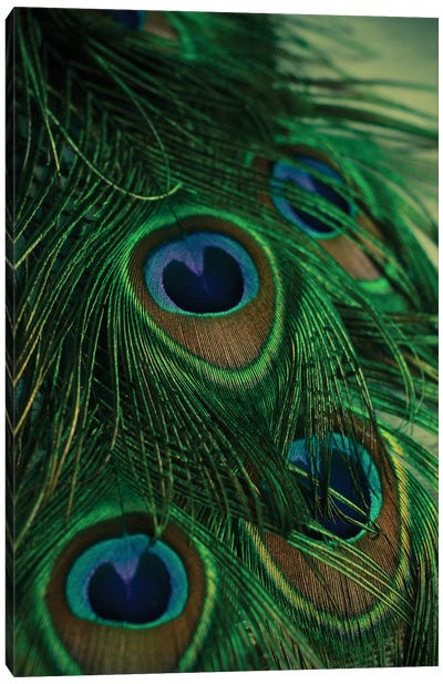 Iridescent Canvas Art Print