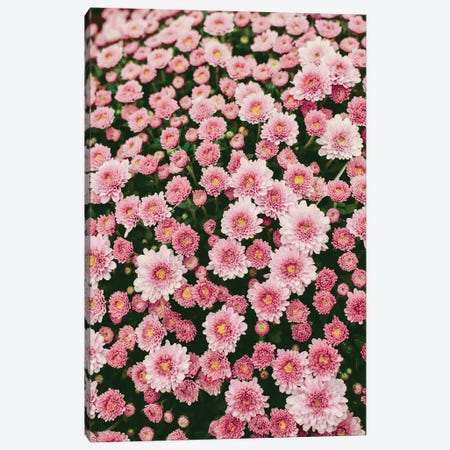 Bloom Abundantly Canvas Print #OJS243} by Olivia Joy StClaire Canvas Art