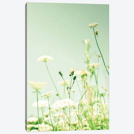 Openhearted Canvas Print #OJS245} by Olivia Joy StClaire Canvas Print
