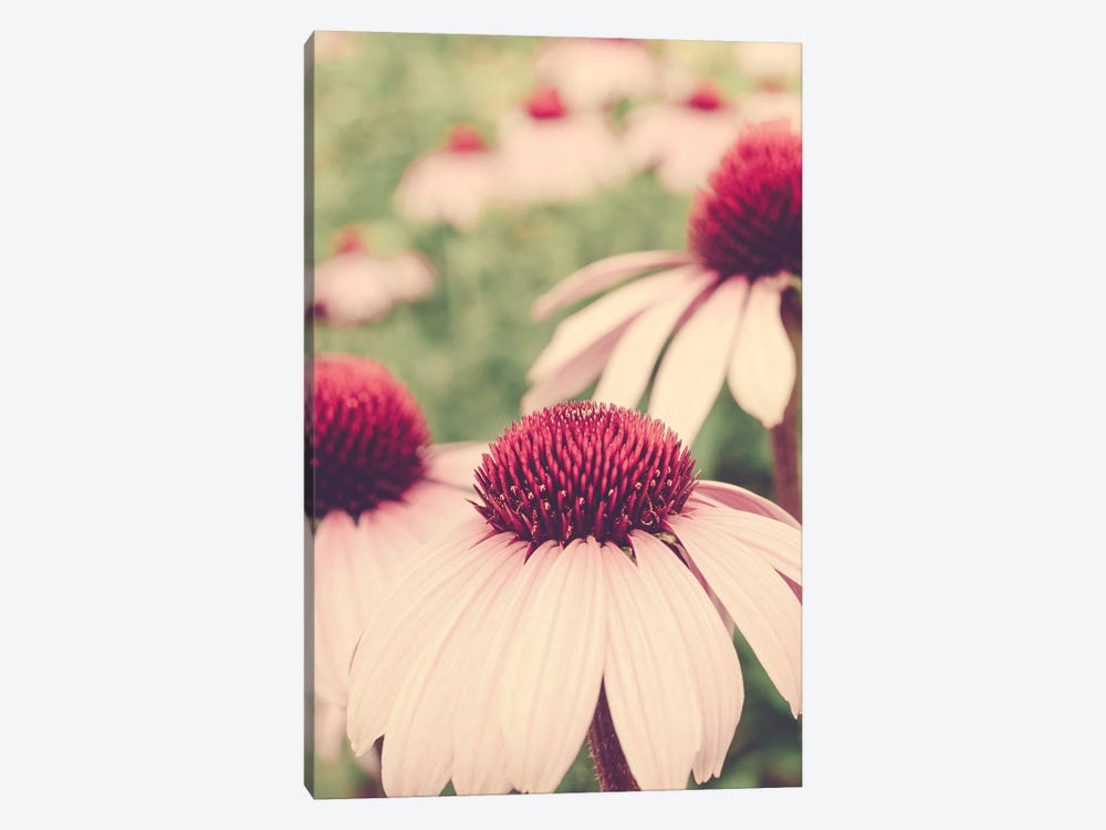Summer Botanical I 1-piece Canvas Wall Art