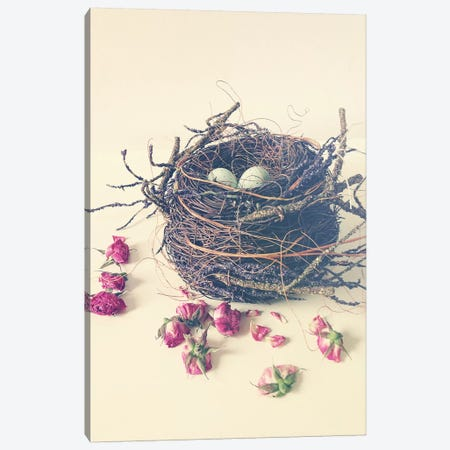 Nest Canvas Print #OJS25} by Olivia Joy StClaire Canvas Wall Art