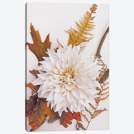 Autumn Mood II Canvas Print #OJS268} by Olivia Joy StClaire Canvas Art