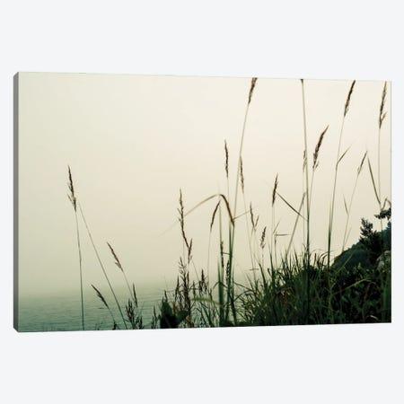 Foggy Coast Canvas Print #OJS271} by Olivia Joy StClaire Canvas Art Print