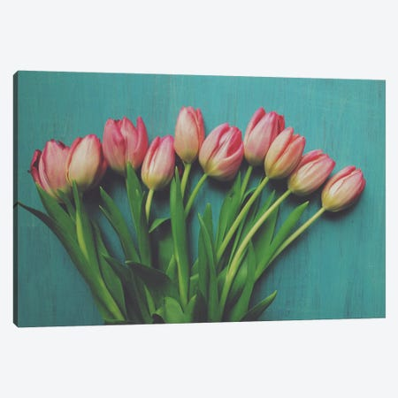 Pink Tulips I Canvas Print #OJS27} by Olivia Joy StClaire Canvas Art