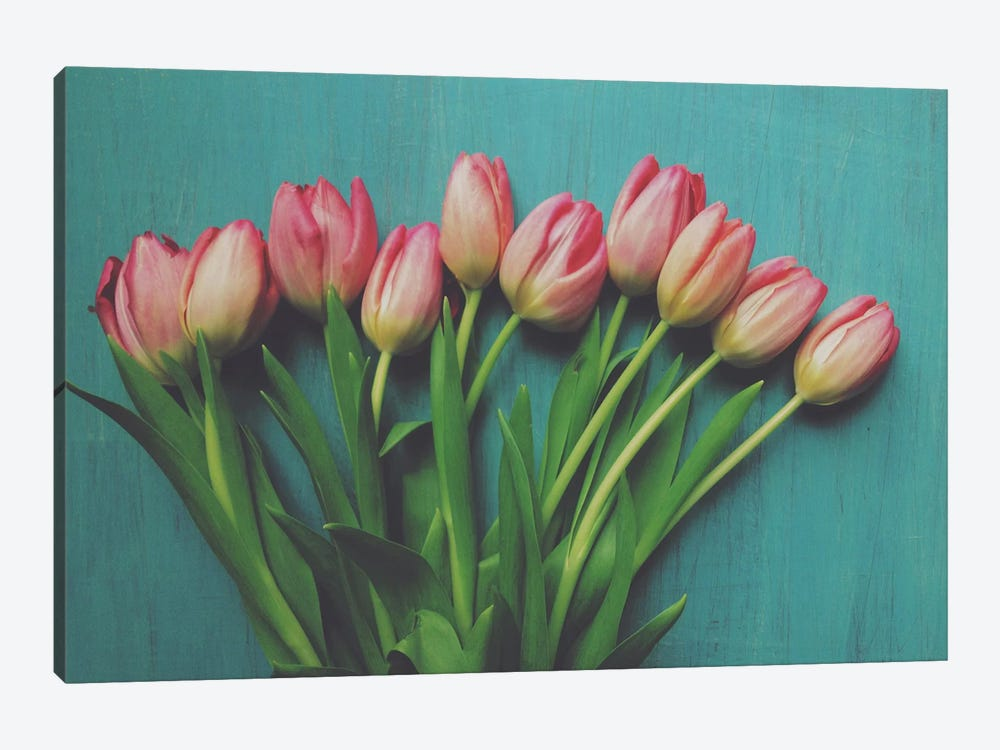 Pink Tulips by Olivia Joy StClaire 1-piece Canvas Art Print