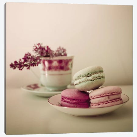 Pretty Macaroons Canvas Print #OJS32} by Olivia Joy StClaire Canvas Wall Art