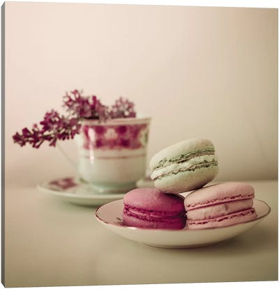 Pretty Macaroons Canvas Art Print
