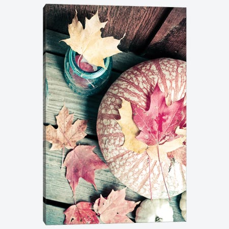 Pumpkin And Leaves Canvas Print #OJS33} by Olivia Joy StClaire Canvas Artwork