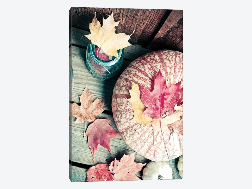 Pumpkin And Leaves by Olivia Joy StClaire 1-piece Canvas Art