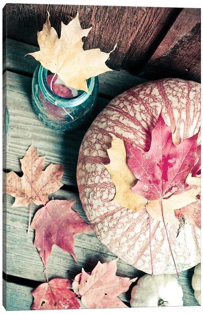 Pumpkin And Leaves Canvas Art Print