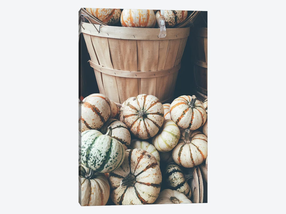 Rustic Pumpkins I by Olivia Joy StClaire 1-piece Canvas Artwork