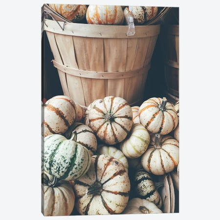 Rustic Pumpkins I Canvas Print #OJS35} by Olivia Joy StClaire Canvas Print