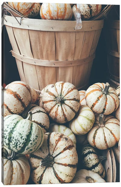Rustic Pumpkins I Canvas Art Print